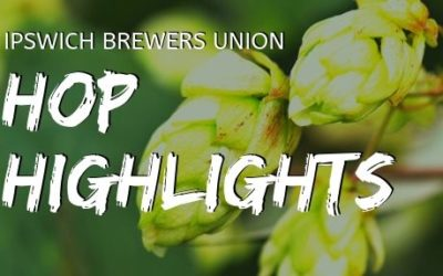 Hop Highlights: Lemondrop