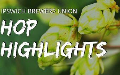 Hop Highlights: Sabro
